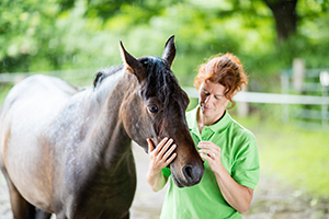 Billings Clinic Equine-Assisted Psychotherapy